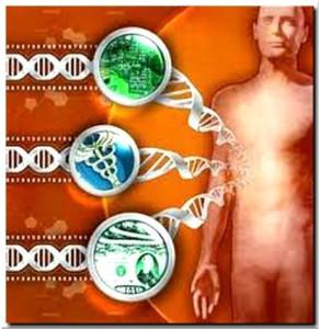 Гены и голодание