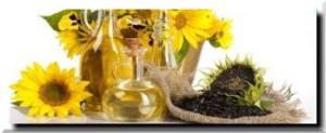 Растительные масла: подсолнечное